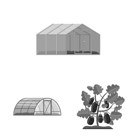 Vector design of greenhouse and plant sign. Collection of greenhouse and garden vector icon for stock. Illustration