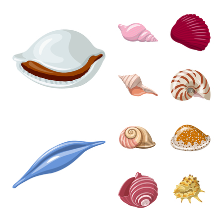 Vector illustration of seashell and mollusk symbol. Set of seashell and seafood  stock vector illustration.