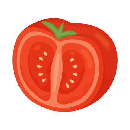 Vector illustration of slice and tomato sign. Collection of slice and half stock vector illustration.