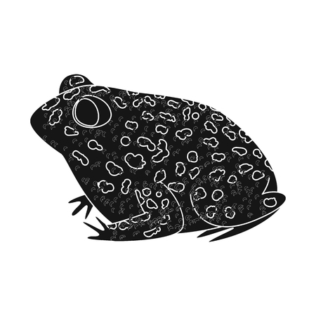 Isolated object of toad and tropical symbol. Set of toad and points stock vector illustration.