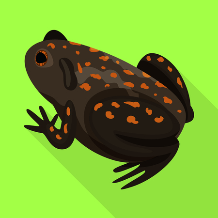 Isolated object of toad and tropical logo. Set of toad and ecology stock vector illustration.