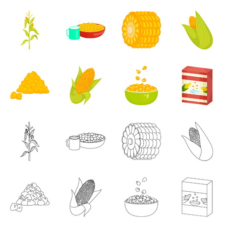 Isolated object of cornfield and vegetable icon. Collection of cornfield and vegetarian stock vector illustration.