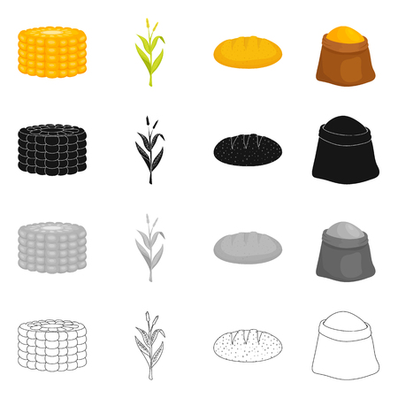 Vector design of cornfield and vegetable. Set of cornfield and vegetarian vector icon for stock. 일러스트