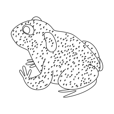 Vector design of toad and tropical sign. Set of toad and ecology stock vector illustration.
