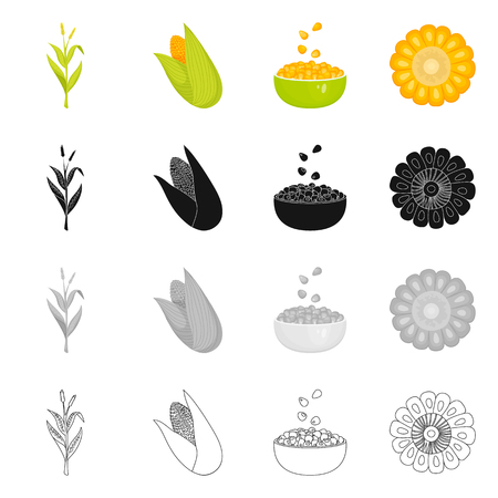 Vector illustration of cornfield and vegetable symbol. Set of cornfield and vegetarian stock symbol for web.  イラスト・ベクター素材