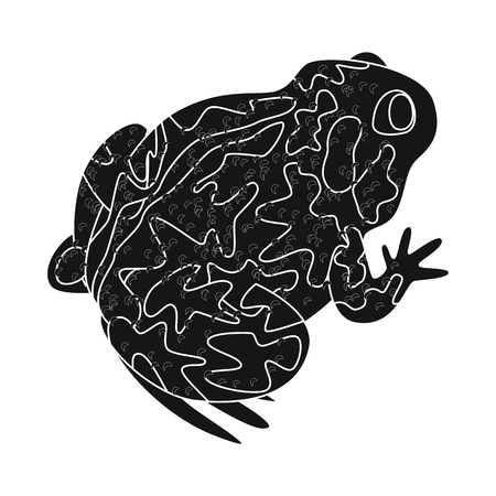 Vector design of toad and biology symbol. Set of toad and tropical stock vector illustration. Иллюстрация