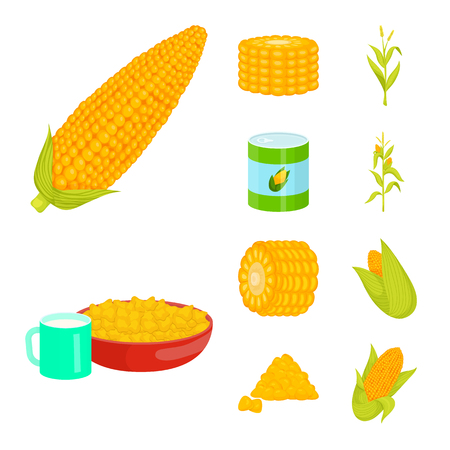 Isolated object of maize and food sign. Set of maize and crop stock symbol for web. Illustration