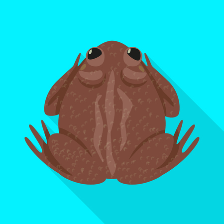 Isolated object of toad and biology icon. Set of toad and tropical vector icon for stock.