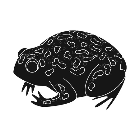 Isolated object of toad and tropical logo. Collection of toad and green stock vector illustration.