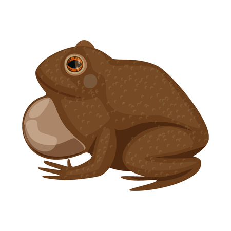 Isolated object of toad and biology logo. Set of toad and brown vector icon for stock. Иллюстрация