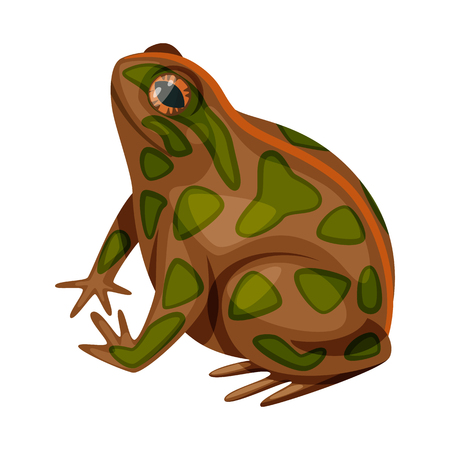 Vector design of toad and biology logo. Set of toad and tropical stock symbol for web. Иллюстрация