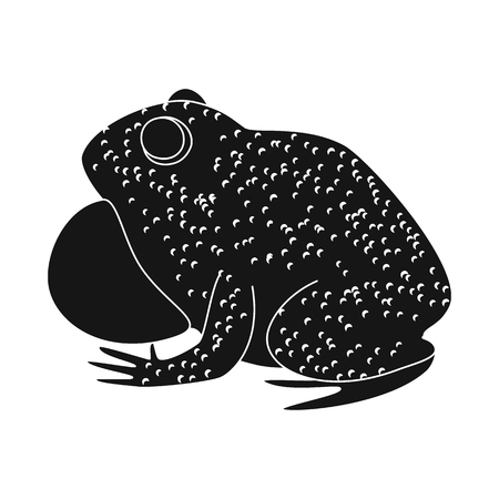 Vector illustration of toad and biology sign. Set of toad and brown stock symbol for web.