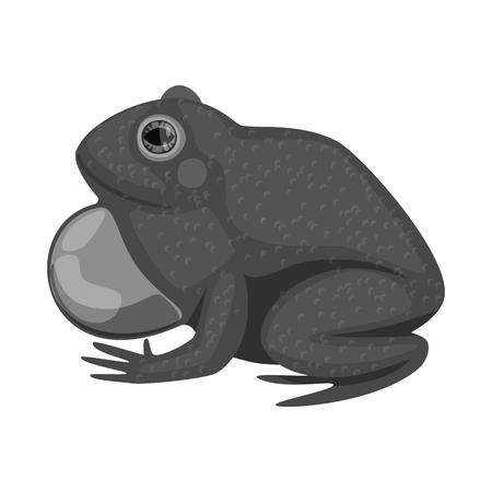 Vector design of toad and biology symbol. Collection of toad and brown vector icon for stock.