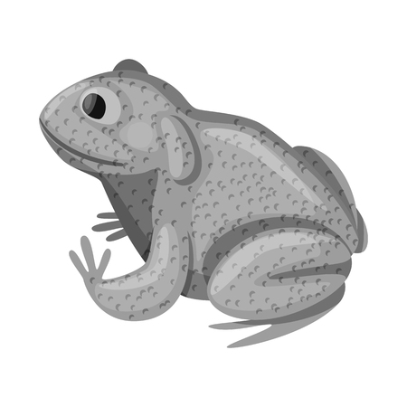 Vector illustration of toad and tropical logo. Set of toad and ecology stock symbol for web.