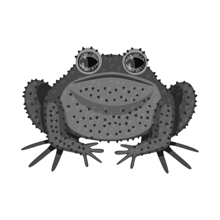 Vector design of toad and biology icon. Collection of toad and tropical vector icon for stock. Иллюстрация