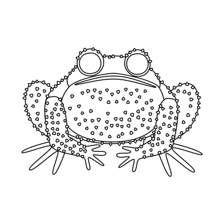 Vector design of toad and biology icon. Collection of toad and tropical stock symbol for web.