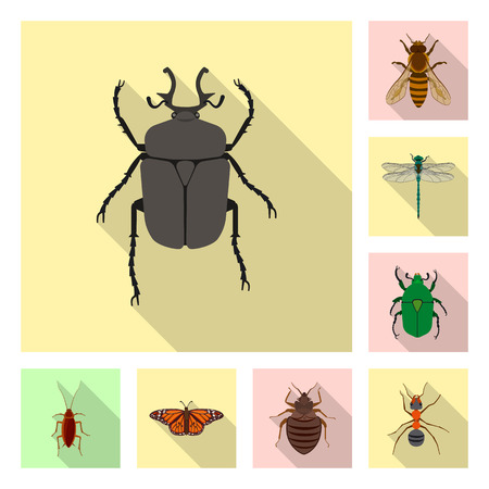 Isolated object of insect and fly sign. Collection of insect and element stock vector illustration.