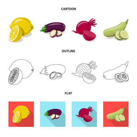 Vector design of vegetable and fruit icon. Collection of vegetable and vegetarian stock vector illustration. Ilustracja