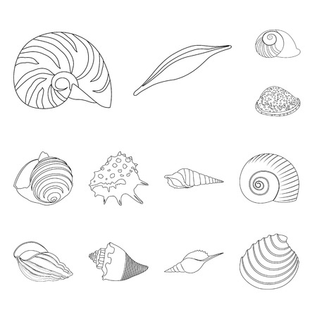 Vector illustration of exotic and seafood  symbol. Set of exotic and aquatic vector icon for stock.