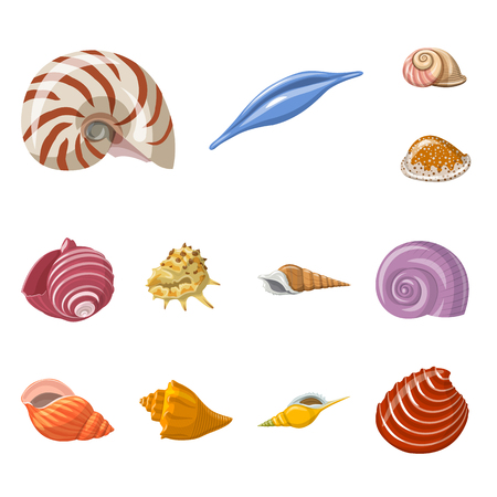 Vector illustration of seashell and mollusk symbol. Collection of seashell and seafood  vector icon for stock.