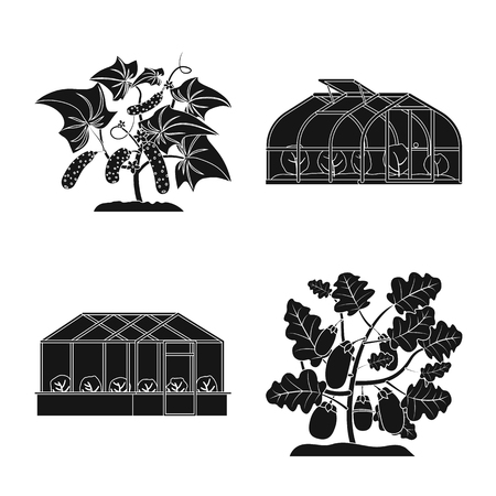 Vector illustration of greenhouse and plant symbol. Collection of greenhouse and garden vector icon for stock. Ilustração