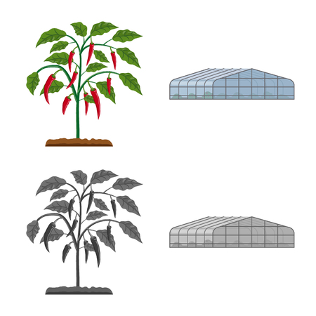 Vector design of greenhouse and plant. Set of greenhouse and garden stock vector illustration.