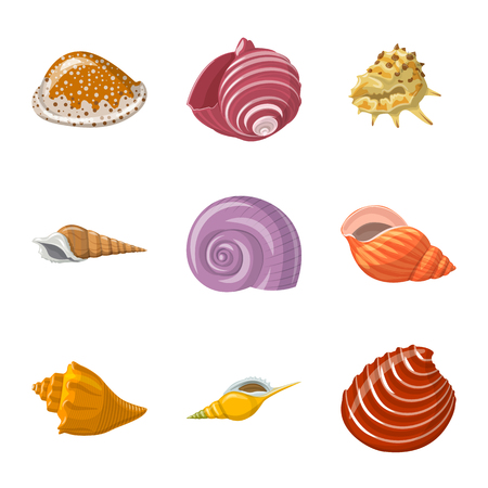 Vektordesign von Muschel- und Weichtierzeichen. Sammlung von Muschel- und Meeresfrüchte-Vektorsymbolen für Aktien.