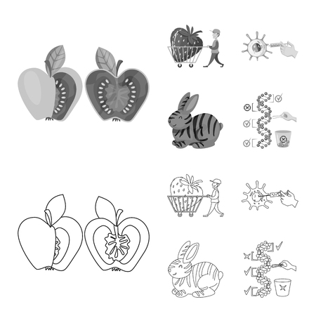 Vector illustration of test and synthetic icon. Set of test and laboratory vector icon for stock.