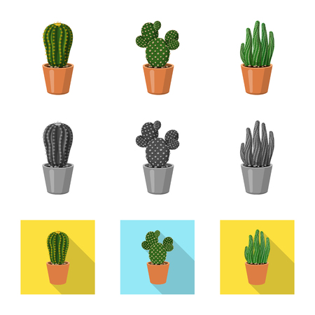 Isolated object of cactus and pot icon. Collection of cactus and cacti stock symbol for web.