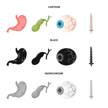 Vector design of body and human symbol. Collection of body and medical stock vector illustration.