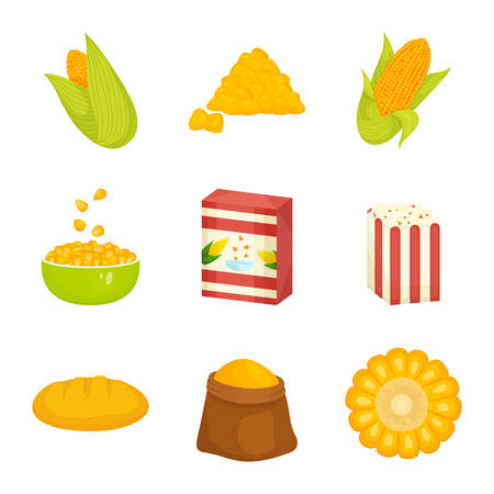 Vector design of maize and food logo. Collection of maize and crop stock vector illustration. Logo