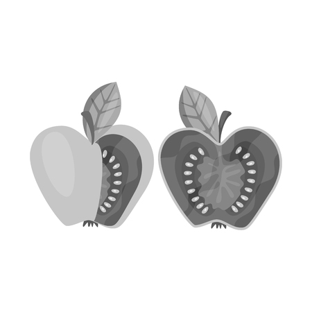 Isolated object of tomato and apple icon. Set of tomato and fruit stock vector illustration.
