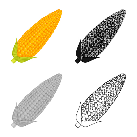 Isolated object of corn and sweetcorn logo. Collection of corn and ripe stock vector illustration.