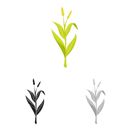 Vector design of sweet and corn icon. Set of sweet and botanical stock symbol for web.