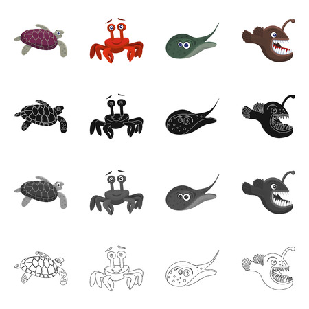 Isolated object of sea and animal. Collection of sea and marine stock symbol for web. Illustration