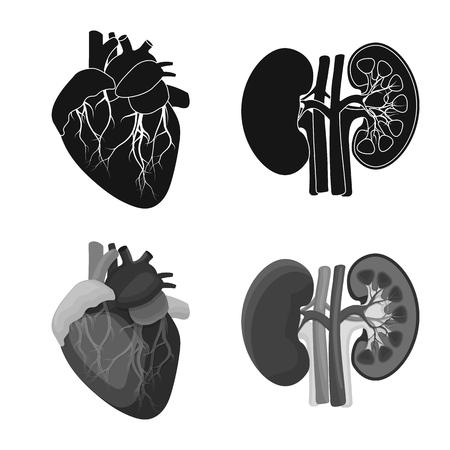 Vector illustration of body and human logo. Collection of body and medical stock vector illustration. 일러스트