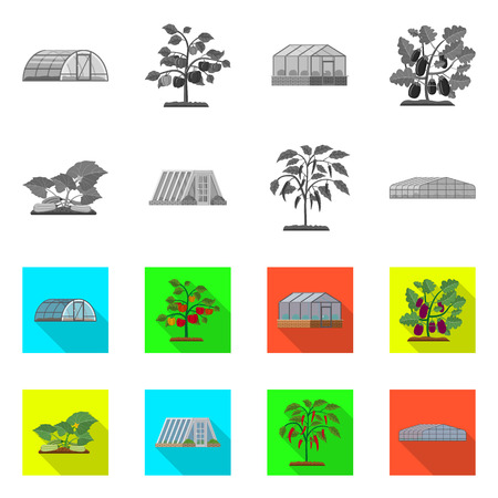 Vector design of greenhouse and plant logo. Collection of greenhouse and garden stock vector illustration.