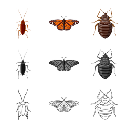 Isolated object of insect and fly symbol. Set of insect and element vector icon for stock.