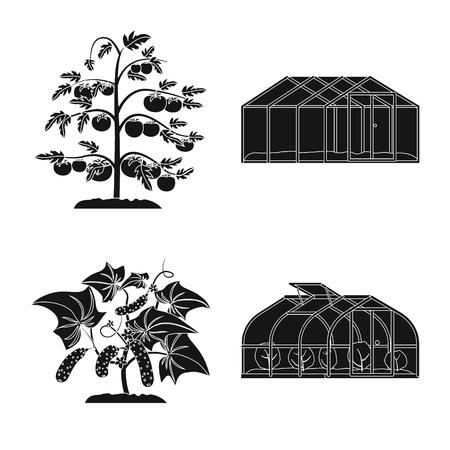 Isolated object of greenhouse and plant. Collection of greenhouse and garden stock vector illustration.