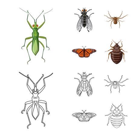 Isoliertes Objekt des Insekten- und Fliegensymbols. Sammlung von Insekten- und Elementaktiensymbolen für das Web.