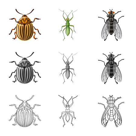 Vektordesign des Insekten- und Fliegenlogos. Satz von Insekten- und Elementvorrat-Vektorillustration.