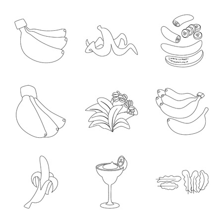 Isolated object of organic and potassium icon. Set of organic and diet stock symbol for web.