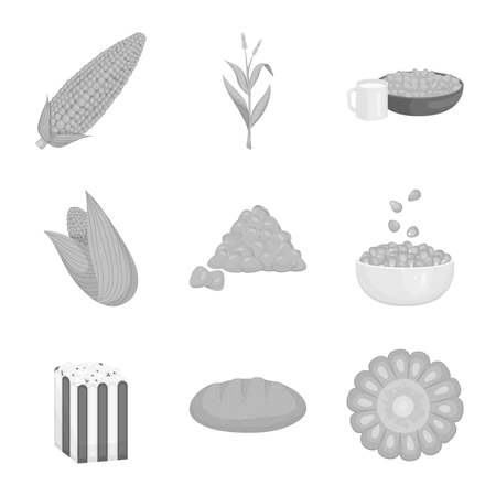 Vector design of agriculture and nutrition icon. Set of agriculture and vegetable vector icon for stock.  イラスト・ベクター素材