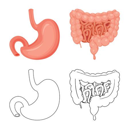 Vector illustration of body and human logo. Set of body and medical vector icon for stock. Illustration