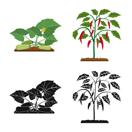 Isolated object of greenhouse and plant icon. Collection of greenhouse and garden stock symbol for web.