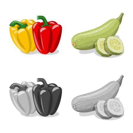 Vector illustration of vegetable and fruit sign. Set of vegetable and vegetarian vector icon for stock. Zdjęcie Seryjne - 124335217