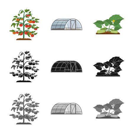 Vector design of greenhouse and plant symbol. Collection of greenhouse and garden vector icon for stock. Ilustracja