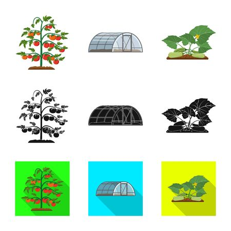 Vector illustration of greenhouse and plant sign. Collection of greenhouse and garden vector icon for stock. Zdjęcie Seryjne - 124474889