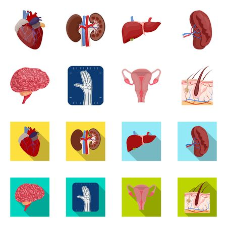 Vector illustration of body and human logo. Collection of body and medical stock vector illustration. Illustration