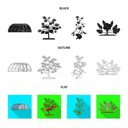 Vector design of greenhouse and plant sign. Set of greenhouse and garden stock symbol for web. Ilustração